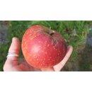 Kürbis Apfel Chutney